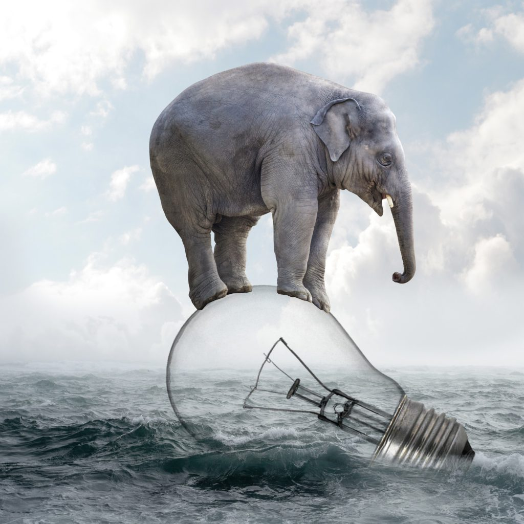 worried elephant delicately balanced on lightbulb in rough waters